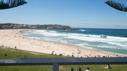 Beach Front -Bondi 38 Serviced Apartments