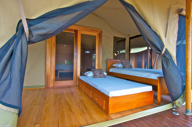 Safari Front Room