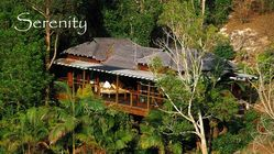 Mt. Warning Rainforest Retreat